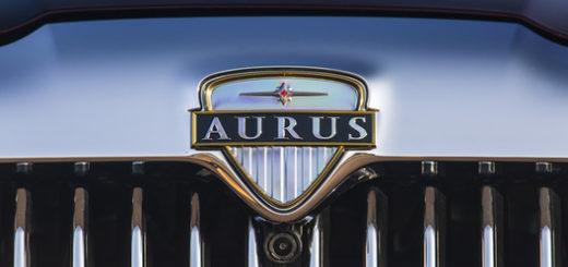 Aurus-dobbin.ru